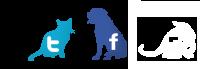 Pixie social icons